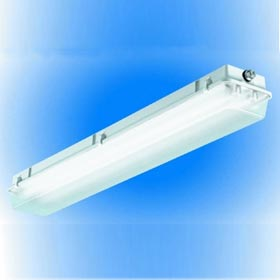 VAR-ENG Series 48 in. 2-Lamp 32W T8 Fluorescent Enclosed Gasketed Vapor Proof Luminaire, EM