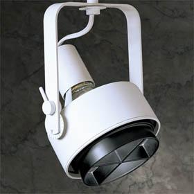 White 4-3/4 in. PAR30 ProSpec Track Light