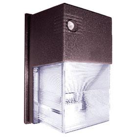 Bronze 2-Lamp 42W CFL Mini Wallpack