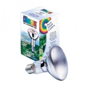 Chromalux 150W 120V Frosted R40 Lamp, Medium Base