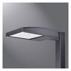 GLEON Bronze 2-Light LED Type III Area Light