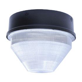 FLEXLED 56W 5000K Large LED Canopy 120V-277V