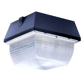 FLEXLED 14W 2700K Small LED Canopy 120V-277V