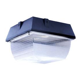 FLEXLED 28W 4000K Medium LED Canopy 120V-277V