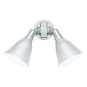 White Dual Swivel PAR38 Flood Light