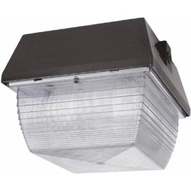 VAN3 50W Metal Halide Vandalproof Ceiling Fixture QT