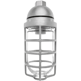 Vaporproof 200 Series Pendant Mount Fixture with Clear Glass Globe and Wire Guard
