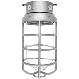 Vaporproof 200 Series 4 Inch Box Mount Fixture with Clear Glass Globe