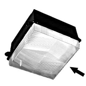 Clear Prismatic Replacement Lens for LCX Series Fixtures