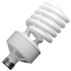 SpringLamp 42W 2700K 277V Compact Fluorescent Lamp