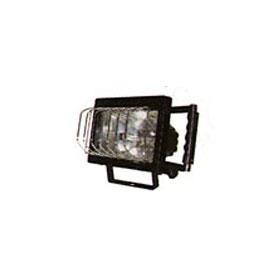 Quartz Halogen Loading Dock Light Head with 500W Lamp